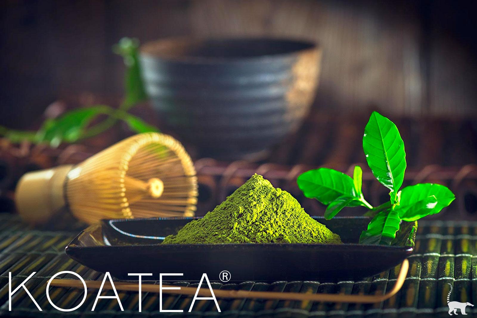 Préparation traditionnelle du thé Matcha au Japon